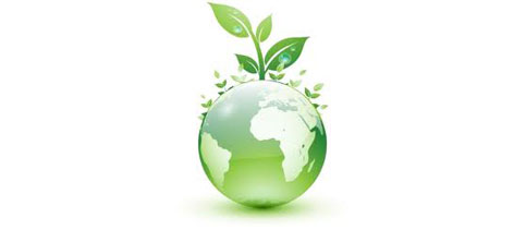Our Go Green Initiatives